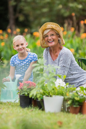 Photo pour Happy grandmother and grandfather gardening on a sunny day - image libre de droit