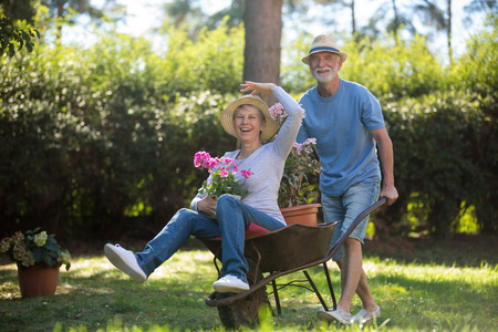 Senior couple playing with a wheelbarrow in the garden on a sunny day