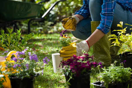 Midsection of woman wearing gloves holding potted plant while crouching on field in backyard