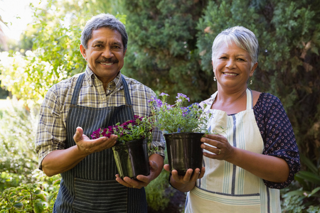 Portrait of happy senior couple holding pot plant in garden