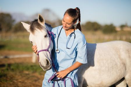 Photo pour Female vet stroking horse while standing in ranch - image libre de droit