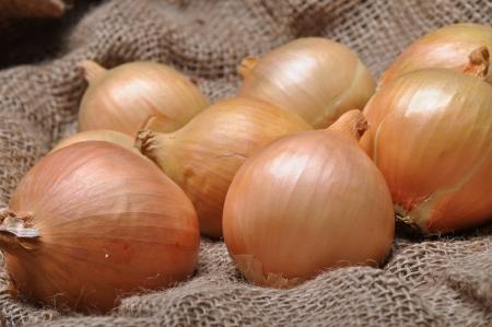 onions on burlap sack