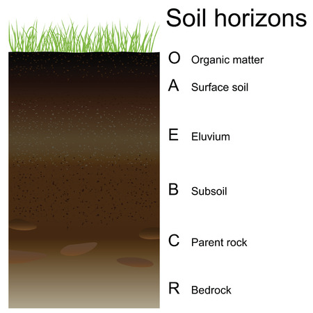 Vector illustration of soil horizons (layers). Easy to edition.
