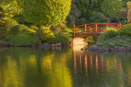 Foto de A tranquil bridge in the Japanese gardens at USQ Toowoomba - Imagen libre de derechos