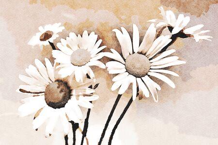 Photo pour Digital art painting canvas - brown toned image of flowering daisies (watercolor effect) - image libre de droit