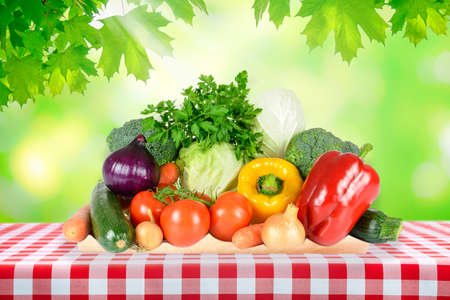 Photo for Healthy eating concept - outdoor picnic with fresh assorted vegetables on a table with classic Italian red checkered tablecloth. - Royalty Free Image