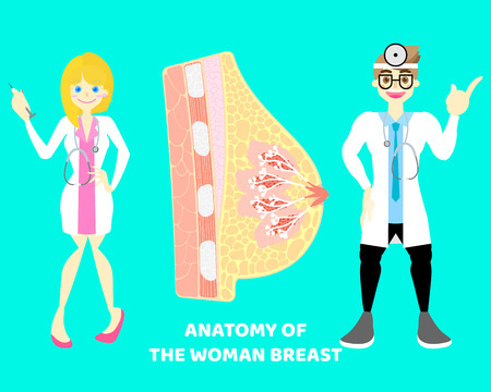 male and female doctor with human breast mammary nipple, internal organs anatomy body part nervous system, background, vector illustration cartoon flat character design clip art