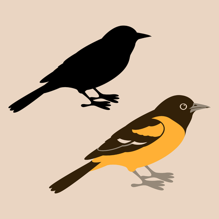 Ilustración de bird oriole vector illustration  flat style black silhouette - Imagen libre de derechos