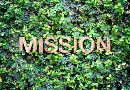 Eco concept : Wood texture  Mission  word icon on green leaves wall.