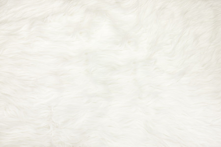 Close up at white fur fabric texture background.
