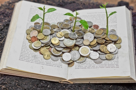 Trees growing on coins over the book   A big open book with coins and tree   Reading makes you richer  concept