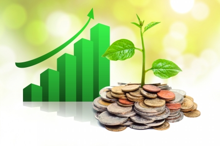 trees growing on coins with green graph   csr   sustainable development   trees growing on stack of coins
