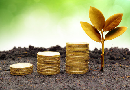 tree piles of coins with small trees   csr   good governance   green business   business ethics