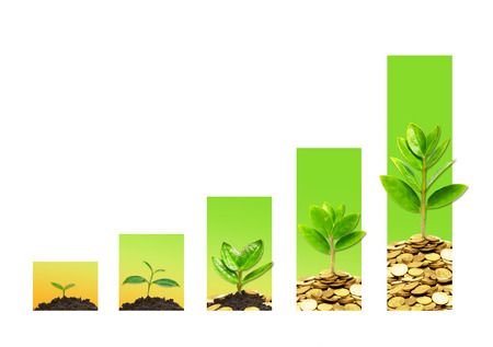 Photo pour tress growing on coins in germination sequence with green graph / csr / sustainable development / business growth - image libre de droit