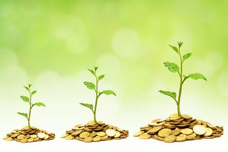 trees growing on golden coins / business growth with csr