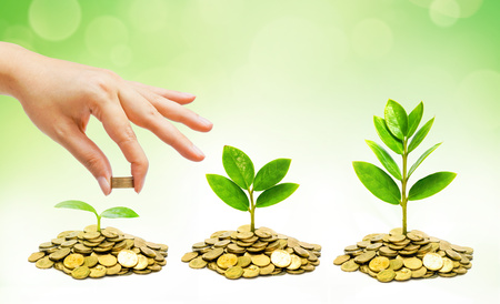 hand giving coins to trees growing on piles of golden coins