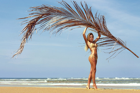 Photo for Woman in bikini poses on beach near sea with palm branch. Phuket, Thailand - Royalty Free Image