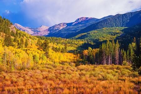 Photo pour Scenic Aspen Lanscape. Colorado Rocky Mountains. Aspen, Colorado, United States. - image libre de droit