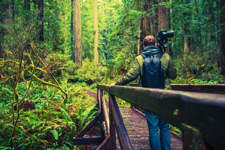 Professional Nature Photographer on Hike with His Photography Equipment.