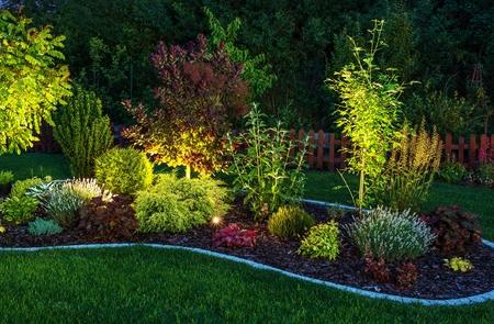 Illuminated Garden by LED Lighting. Backyard Garden at Night Closeup Photo.