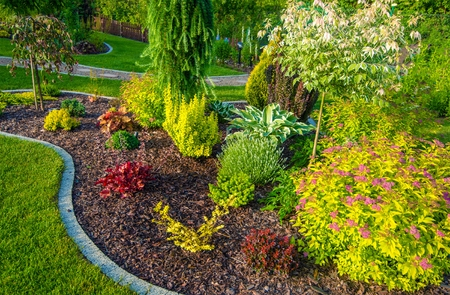 Photo for Small Backyard Garden Closeup Photo. - Royalty Free Image
