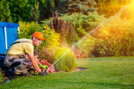 Foto per Garden Watering Systems. Garden Technician Testing Watering Sprinkler System in the Residential Garden. - Immagine Royalty Free
