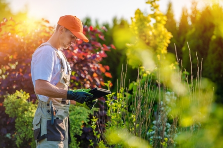 Photo pour Garden Design with Tablet Device. Professional Gardener with His Tablet Computer. - image libre de droit