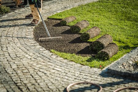 Photo pour Newly Developed Garden Grass Turfs Installation> Landscaping Industry Theme. - image libre de droit