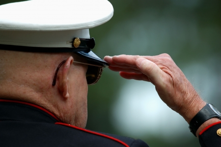 Foto per Old Marine saluting during a military ceremony - Immagine Royalty Free