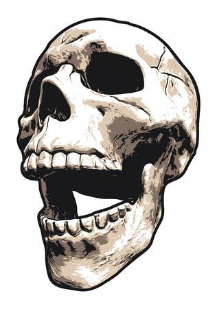 Illustration pour Realistic Laughing Human Skull - image libre de droit