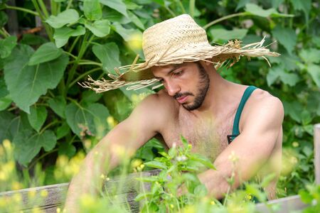 Photo pour portrait of handsome bearded man with straw hat relaxing in garden - image libre de droit