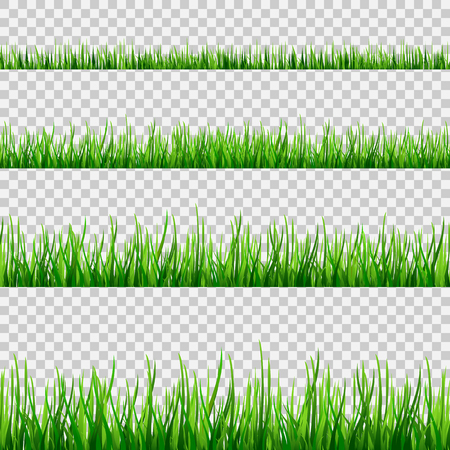 Illustration pour Grass seamless field pattern isolated on white. Vector green grass illustration eps10 - image libre de droit