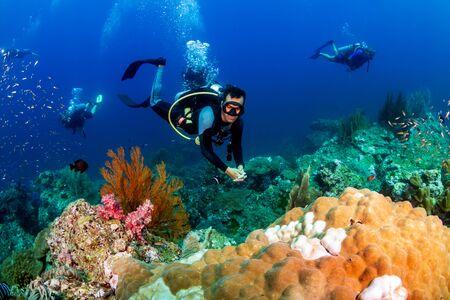 Photo pour SCUBA divers on a colorful tropical coral reef - image libre de droit