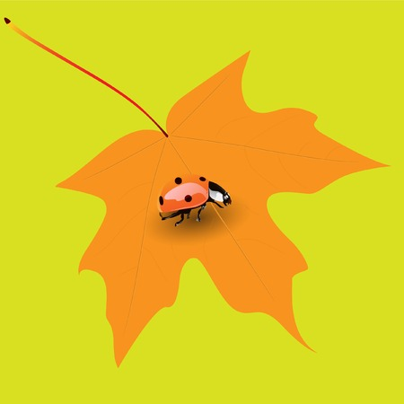 Insect on yellow leaf. Vector. Without mesh.