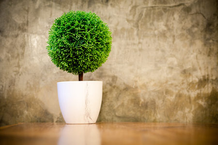 artificial small tree in a white flower pot with retro cement wall.
