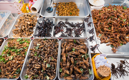 exotic Thai food - fried and roasted insects including scorpions