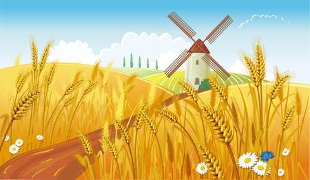Vektor für Rural landscape with windmill - Lizenzfreies Bild