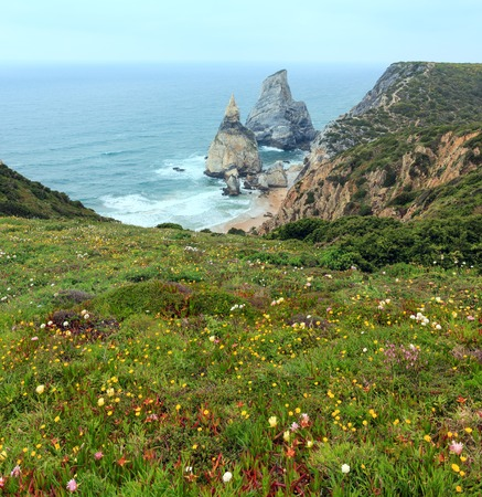 Atlantic ocean summer coast with granite boulder and sea cliffs, sandy beach and flowers in front. View from Cape Roca (Cabo da Roca), Portugal.