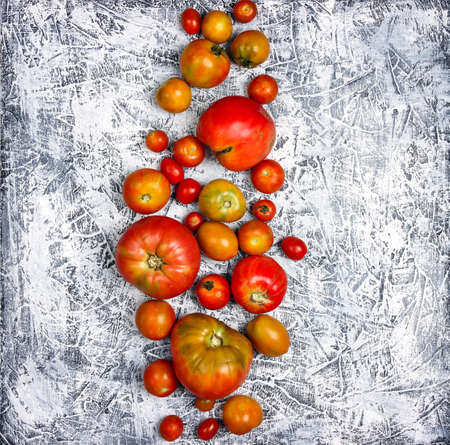 Photo for Colorful tomatoes of different sizes on gray background. Top view square image. - Royalty Free Image