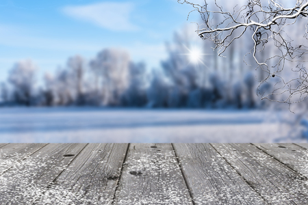 winter landscape background with grey wood