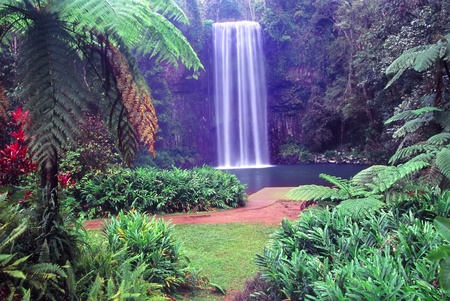 Millaa Millaa Falls of Wooroonooran National Park in tropical Queensland, Australia