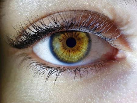 Photo for A beautiful macro closeup shot of a female human's deep eyes - Royalty Free Image
