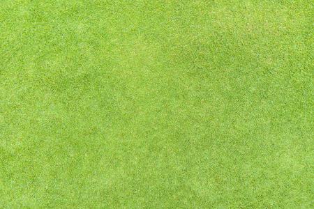 Photo pour Golf fairway grass texture top view - image libre de droit