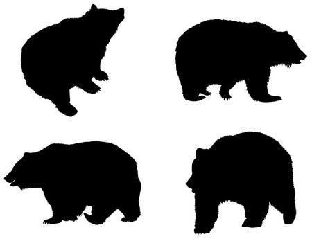 Detailed bear's silhouettes