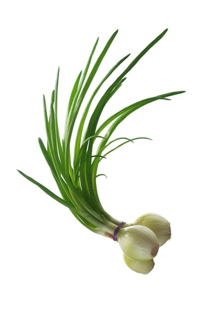 green chives on white background