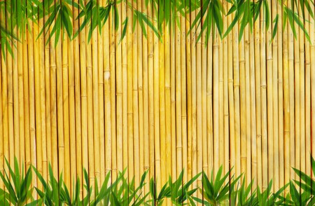 frame of bamboo leaves background