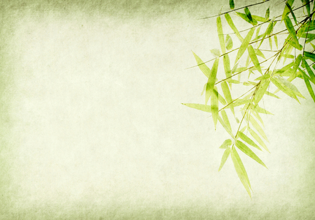 Foto de bamboo on old grunge paper texture background - Imagen libre de derechos