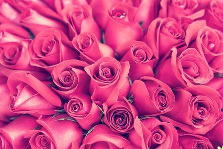 Photo pour red rose background ,natural texture - image libre de droit