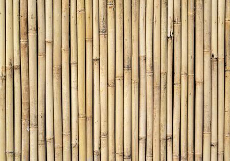 Photo pour fence made of bamboo sticks - image libre de droit