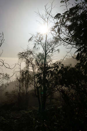 Photo for bueutiful moment morning view in ijen crater - Royalty Free Image